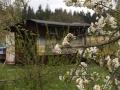 DSCF0662 stanoviště včelstev př. Soukupa ve Žďáru u Kumburku 1.5.2015.JPG